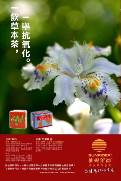 仙妮蕾德海報-茶.jpg