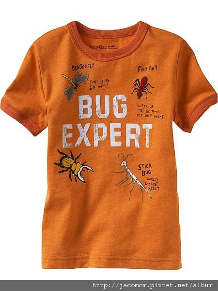 7、Bug expert