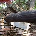 安平樹屋-樑
