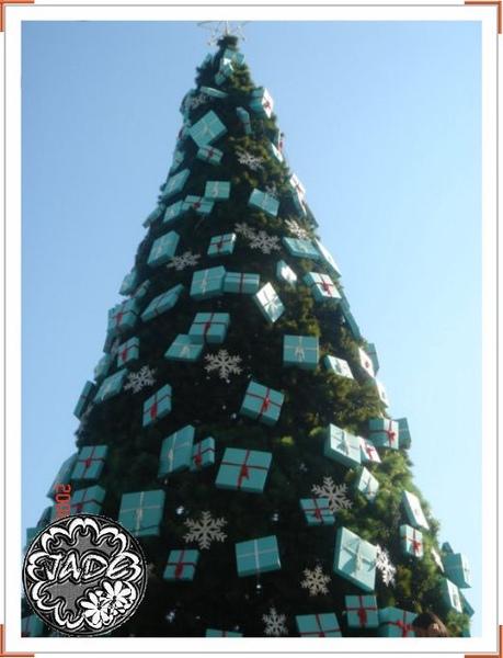 101的聖誕樹.jpg