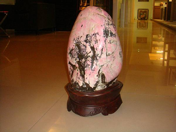 花蓮木瓜溪玫瑰石18乘44cm(含座).JPG