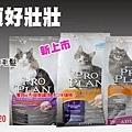 冠能貓飼料banner.jpg