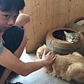 小孩愛玩毛小孩 貓毛 狗毛 過敏 JAIR 潔淨 空氣清淨機4