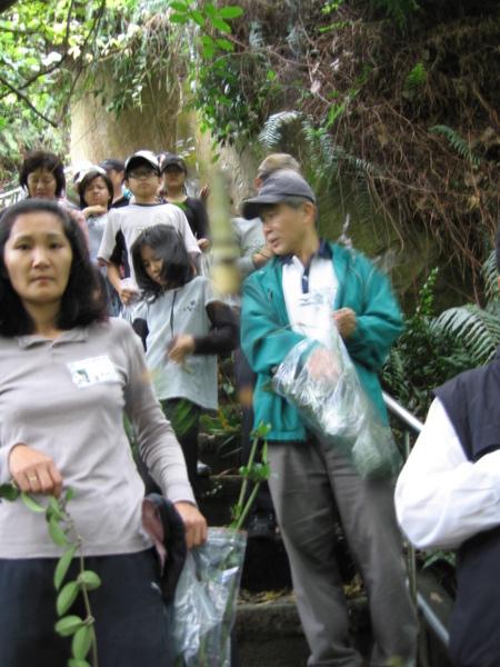 大家興奮的在林間採集..呵呵..心猿意馬啦!