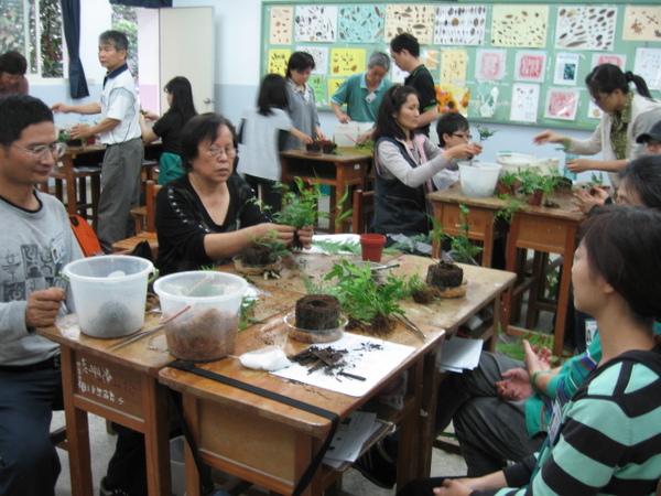 回到教室開始學習幫蕨類植物班新家了
