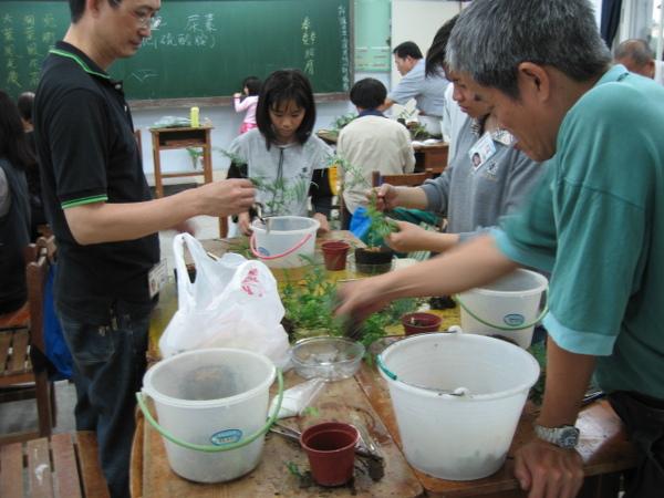 大家都對蕨類植物充滿好奇
