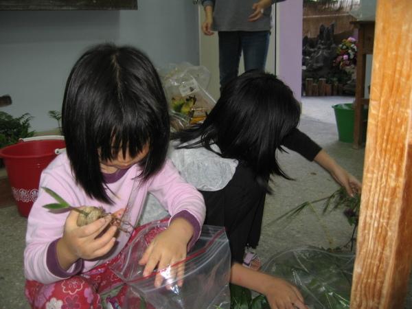姊妹兩認識的植物真不少幫姑姑整理植物更用心