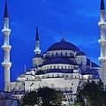 Sultan 2.jpg