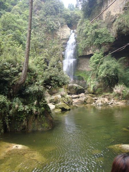 森林浴很舒暢!