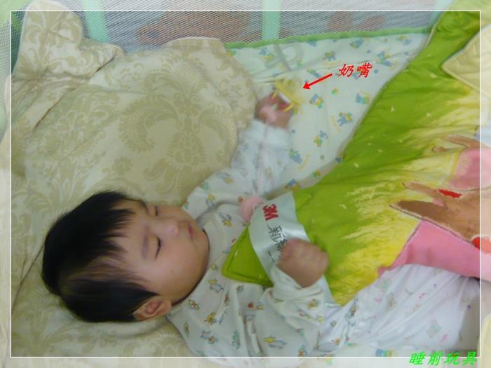 P1050376睡前玩具.JPG