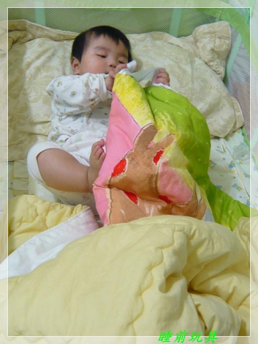 P1050404睡前玩具.JPG