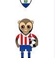 世界盃八強-巴拉圭