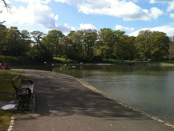 天氣好連小湖都很引人入勝