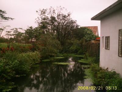 屋邊的小溪