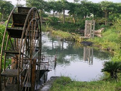 休閒農場的水車