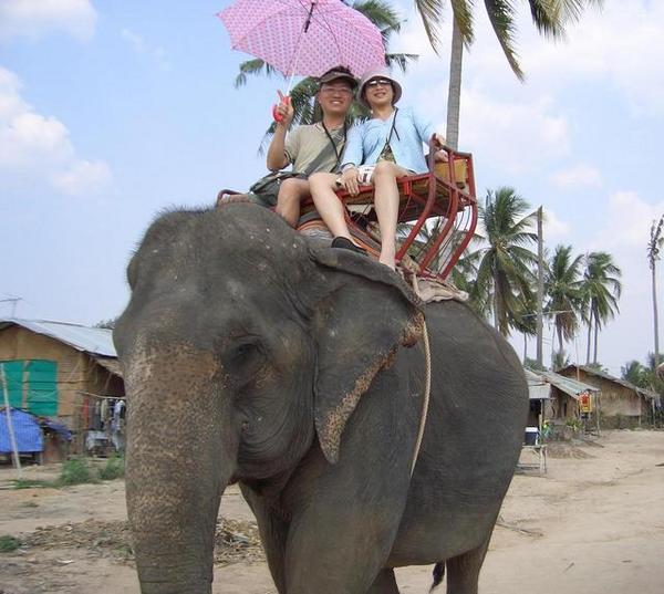 叢林騎大象