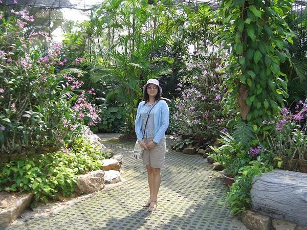 東芭樂園~蘭花園