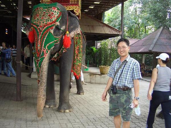 東芭樂園內大象表演