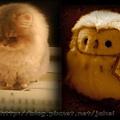 貓頭鷹與貓2.jpg