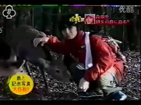 [14]_020109_真夜中の嵐-松鹿と対決(松)[16-30-09].JPG