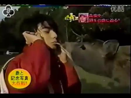 [14]_020109_真夜中の嵐-松鹿と対決(松)[16-30-15].JPG