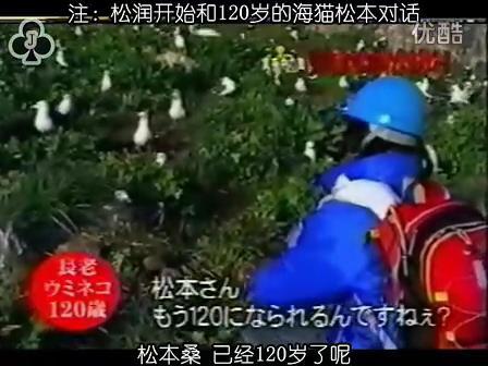 [32]_020515_真夜中の嵐-160歳の鳥を探せ(松)[17-34-05].JPG