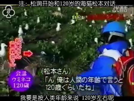 [32]_020515_真夜中の嵐-160歳の鳥を探せ(松)[17-34-10].JPG