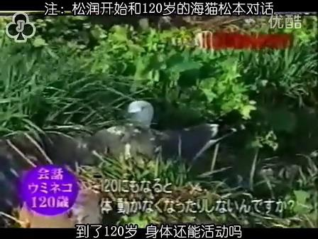 [32]_020515_真夜中の嵐-160歳の鳥を探せ(松)[17-34-16].JPG