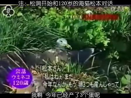[32]_020515_真夜中の嵐-160歳の鳥を探せ(松)[17-34-28].JPG