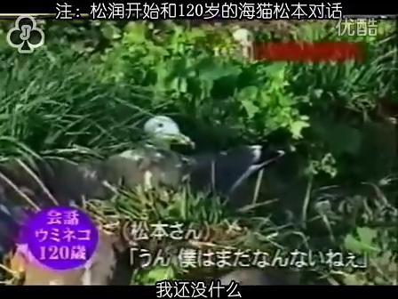 [32]_020515_真夜中の嵐-160歳の鳥を探せ(松)[17-34-21].JPG