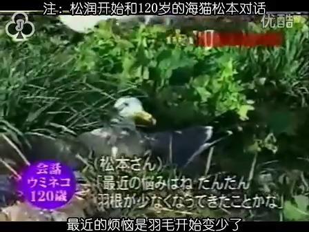 [32]_020515_真夜中の嵐-160歳の鳥を探せ(松)[17-34-43].JPG