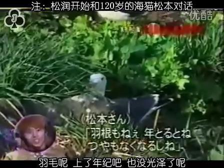 [32]_020515_真夜中の嵐-160歳の鳥を探せ(松)[17-34-50].JPG