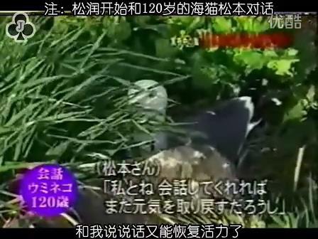 [32]_020515_真夜中の嵐-160歳の鳥を探せ(松)[17-35-07].JPG