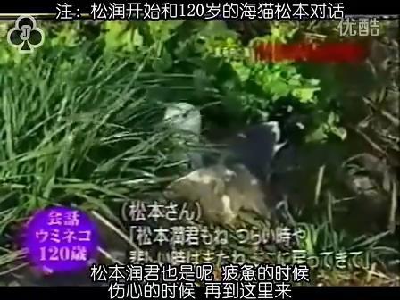 [32]_020515_真夜中の嵐-160歳の鳥を探せ(松)[17-35-03].JPG