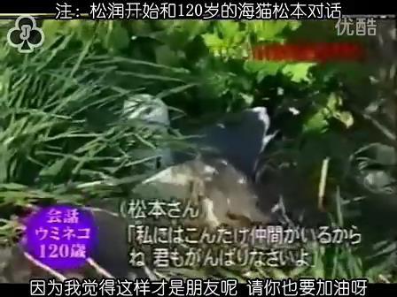[32]_020515_真夜中の嵐-160歳の鳥を探せ(松)[17-35-15].JPG