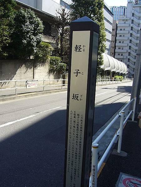 P1100656.jpg