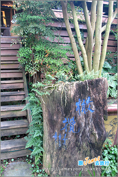 台中新社-橄欖樹景觀餐廳03