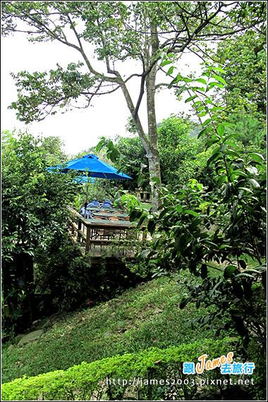台中新社-橄欖樹景觀餐廳08