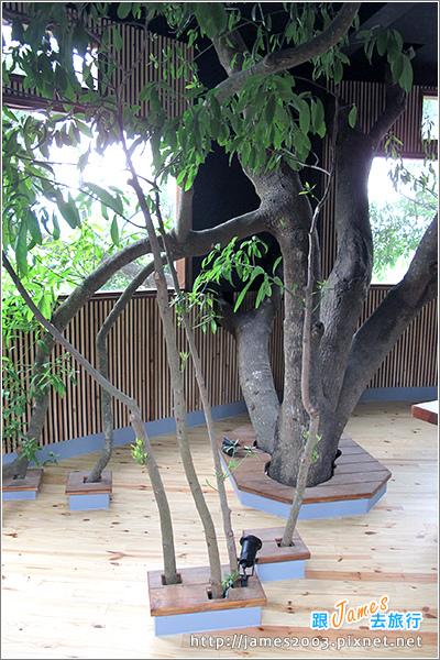 [埔里景點] 牛耳石雕公園-樹屋餐廳08.JPG