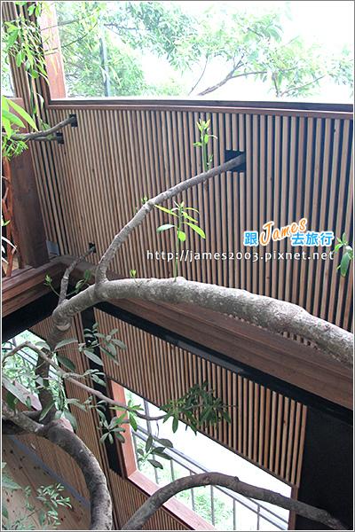[埔里景點] 牛耳石雕公園-樹屋餐廳16.JPG