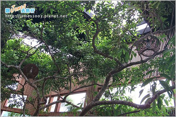 [埔里景點] 牛耳石雕公園-樹屋餐廳18.JPG