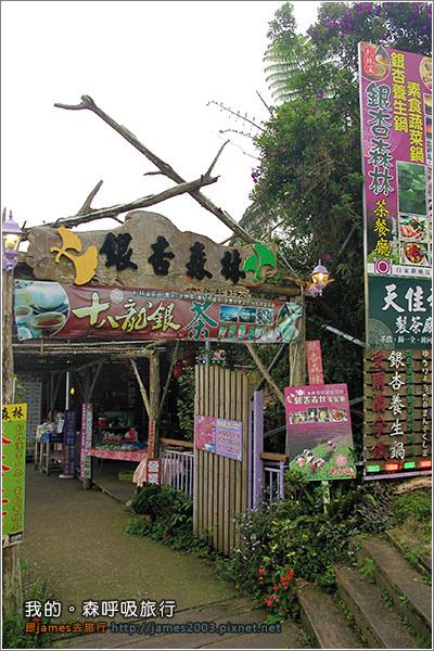 南投溪頭-杉林溪-銀杏森林景觀餐廳20.JPG