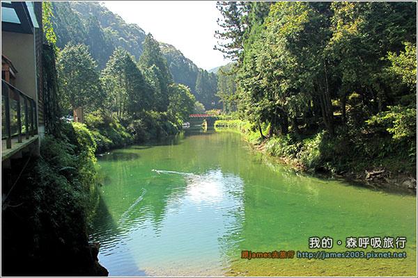 [南投景點] 我的森呼吸旅行-杉林溪02.JPG