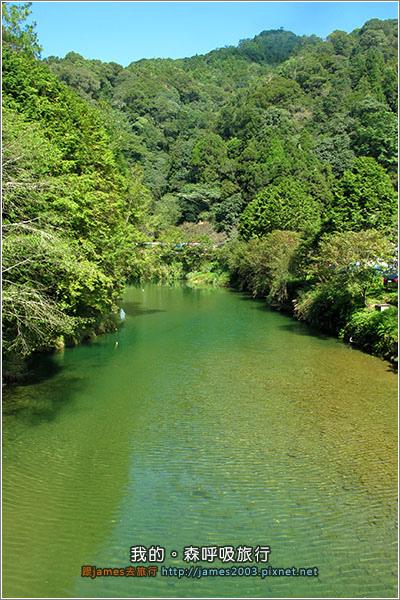 [南投景點] 我的森呼吸旅行-杉林溪04.JPG