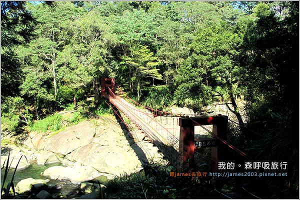 [南投景點] 我的森呼吸旅行-杉林溪05.JPG