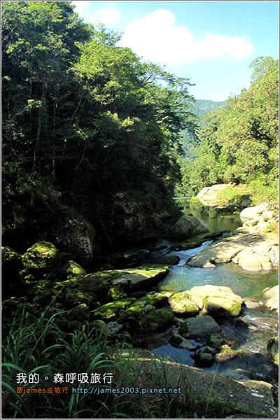 [南投景點] 我的森呼吸旅行-杉林溪06.JPG
