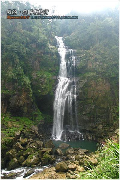 [南投景點] 我的森呼吸旅行-杉林溪12.JPG