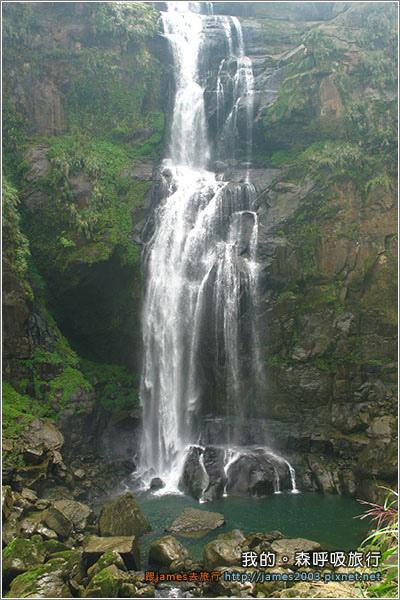[南投景點] 我的森呼吸旅行-杉林溪13.JPG