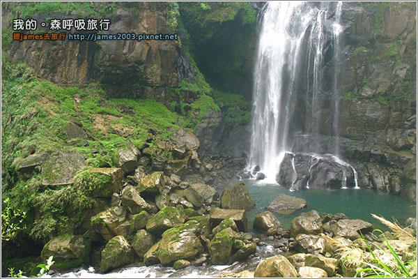 [南投景點] 我的森呼吸旅行-杉林溪14.JPG