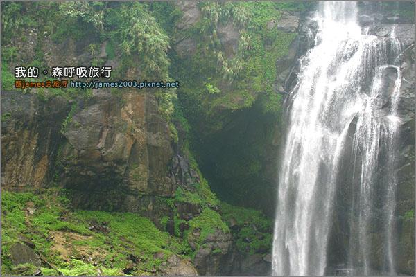 [南投景點] 我的森呼吸旅行-杉林溪16.JPG
